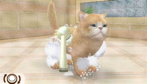 nintendogs cats laps    ds game review metro news