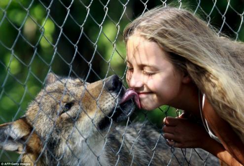 η-10χρονη-που-λατρεύουν-οι-λύκοι