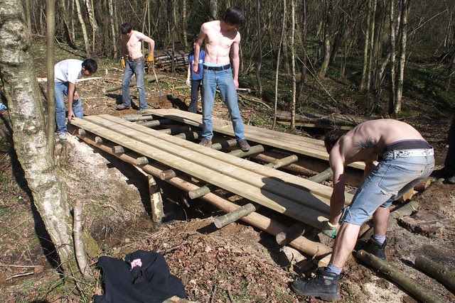 DSC_3744 Building a log bridge