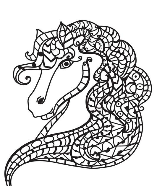 ausmalbilder pferdekopf  ausmalbilder pferde kostenlos