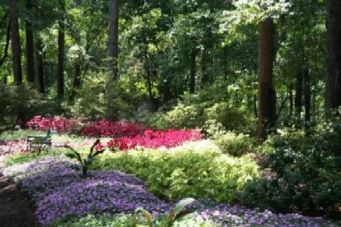 Garden Port One Spot Garden Imagine Flower Garden