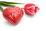 Herzförmiger Speckstein mit Aufschrift Merci