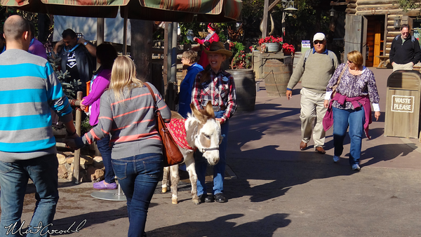 Disneyland Resort, Disneyland, Frontierland, Big Thunder Ranch