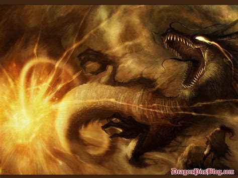 fire dragon wallpapers hd wallpapers pics