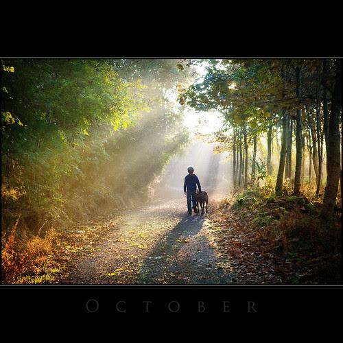 October por Tony Murphy