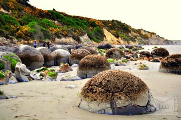moeraki-boulders-1-1