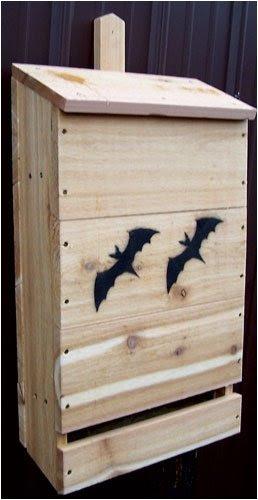 SP10H Features: -Wood nursery bat house. -Cedar construction.