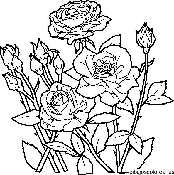 Dibujo De Un Ramo De Rosas Para Mamá