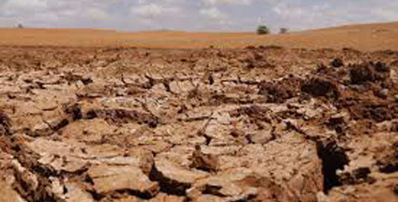 Rs 9,000 mn to help drought stricken