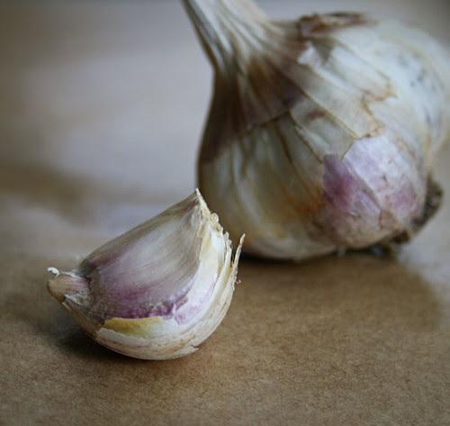 12_CPE_garlic2