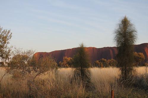 IMG 9862 Uluru Dreaming 2012