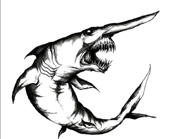 Goblin Shark Drawing | Free download on ClipArtMag