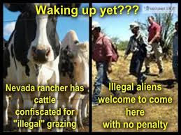 http://thecommonsenseshow.com/siteupload/2014/04/bundy-cattle-confiscated.jpg