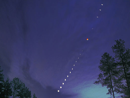 Photographer David Cortner recorded this dramatic composite sequence of the November 8 total lunar eclipse in the skies over Connelly's Springs, North Carolina. Cortner took telescopic pictures of the Moon every eight minutes, then recorded a wide-angle view in a long exposure to bring out the thickening clouds and a silhouetted landscape. Later, the views were carefully combined along the Moon's trail through the wide-angle image to create the sequence. Credit and Copyright: David Cortner