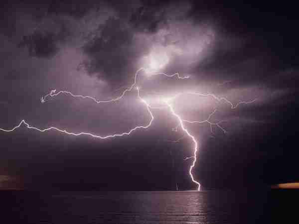 diaforetiko.gr : 173 Όσοι πιστεύετε ότι τα πάντα στη φύση είναι τυχαία, διαβάστε αυτό το άρθρο...