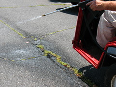 Spraying against weeds with Round-Up by Vilseskogen