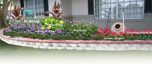 Landscape Services South Florida Landscape Design Installation
