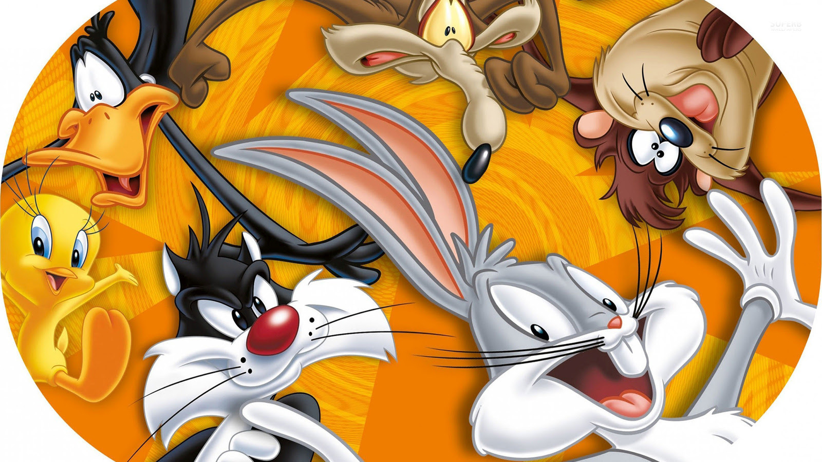 Looney Tunes The Looney Tunes Show Wallpaper 38681633 Fanpop