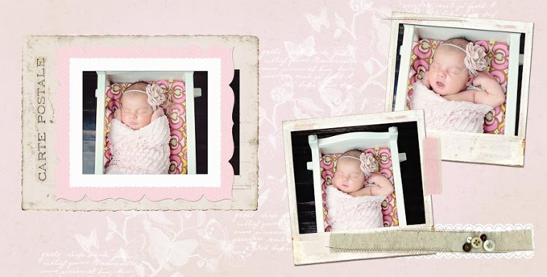 Newborn Baby Girl Album B