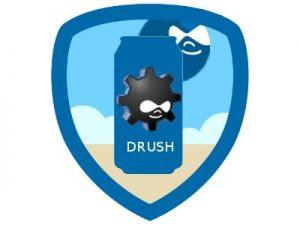 Yang Harus Kamu Tahu Tentang Drush Drupal