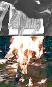Flaming Mo #2