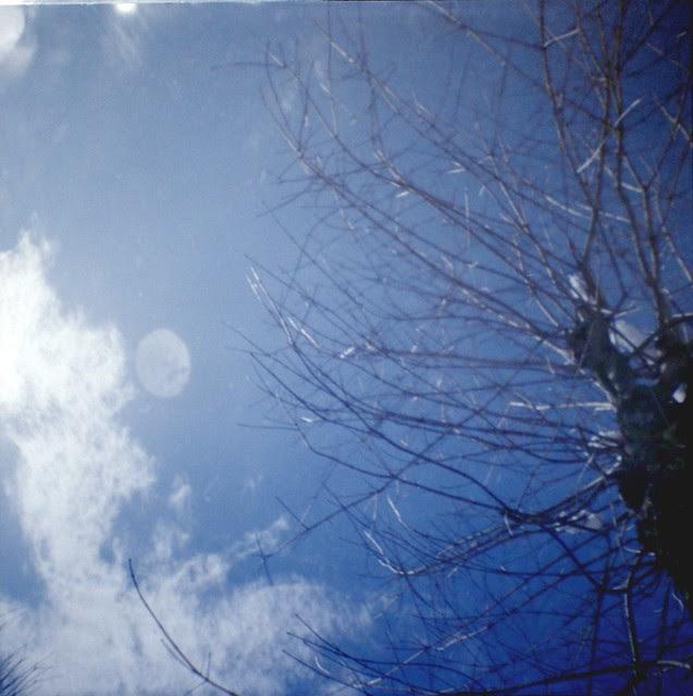 nadir tree (+1)