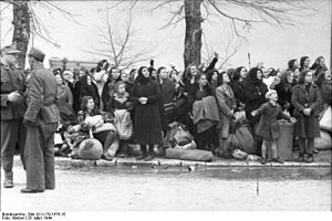 Bundesarchiv Bild 101I-179-1575-15, Ioannina, ...