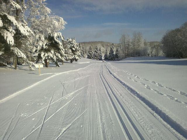 haliburton nordic ski