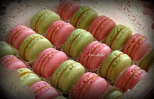 pinkgreenmacs