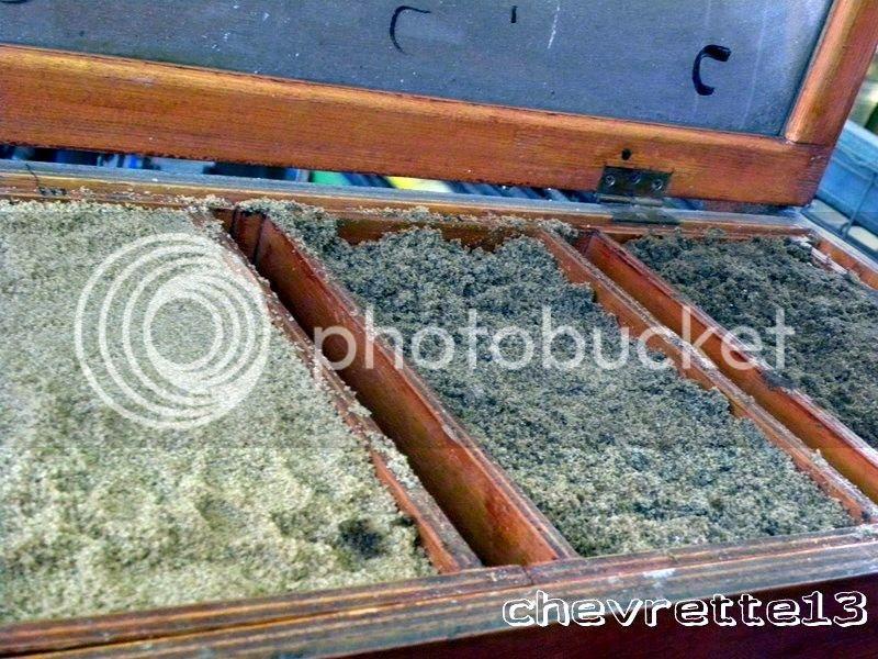http://i1252.photobucket.com/albums/hh578/chevrette13/Guadeloupe/DSCN8053Copier_zpsb1406a0d.jpg