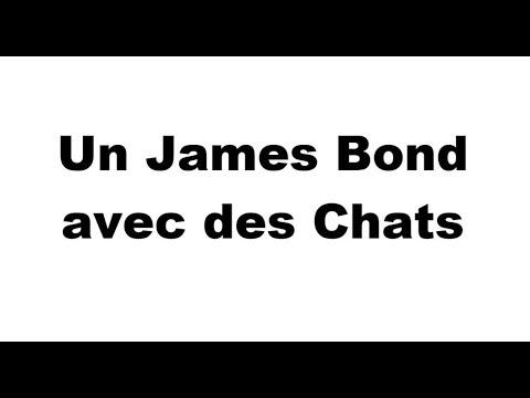 Un James Bond avec des Chats
