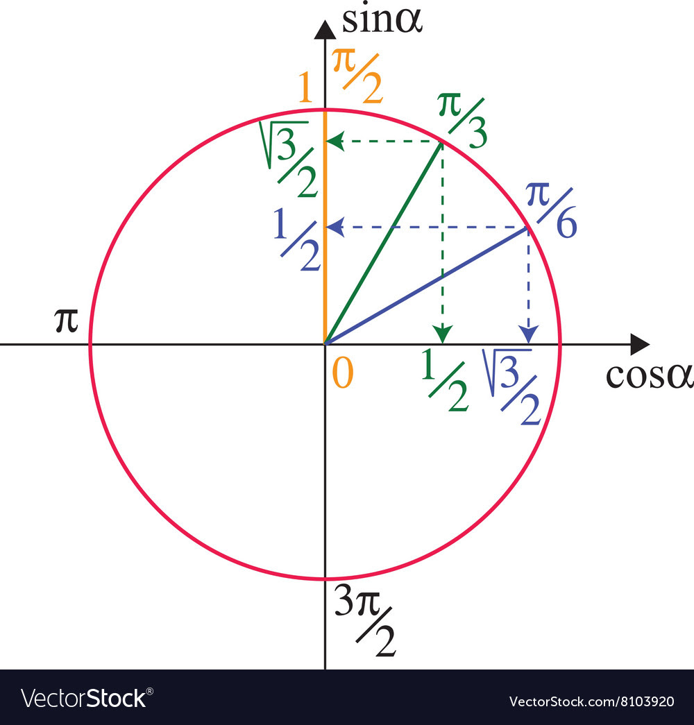 Trigonometric unit circle vector by MariaShmitt - Image #8103920 ...