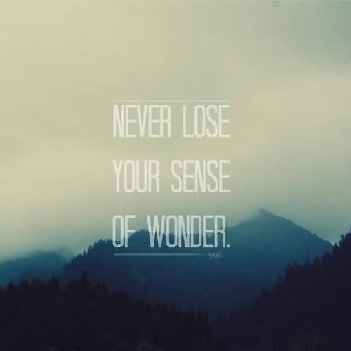 Wonder Quotes And Wonder Sayings Images About Never Lose Your Sense