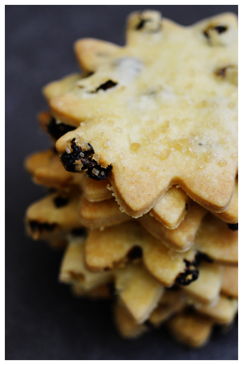 currant cookies© by Haalo