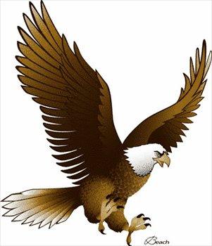 980+ Gambar Burung Rajawali Clipart Gratis