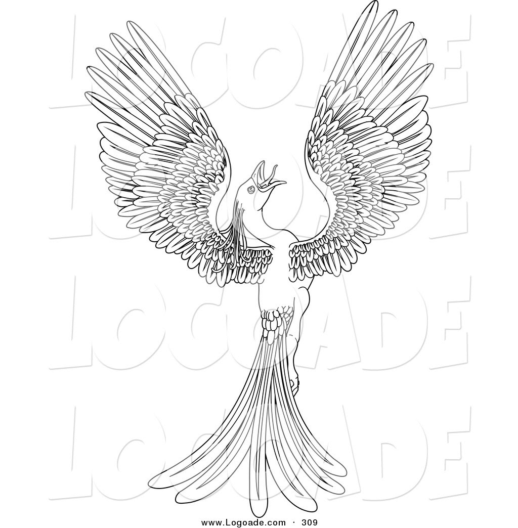 880 Coloring Pages Of Phoenix Bird Pictures