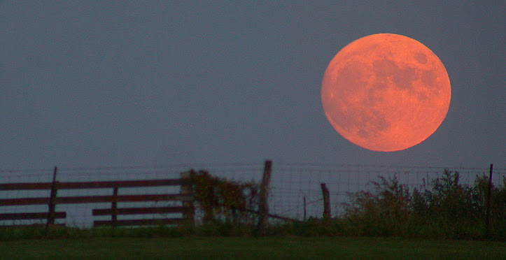 File:Harvest moon.jpg
