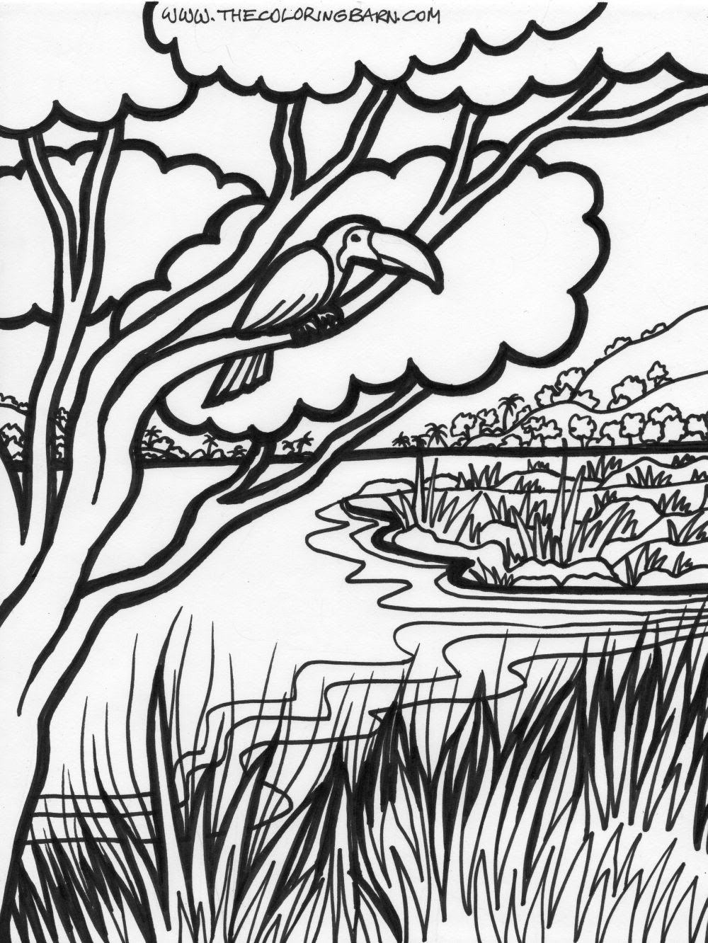 Easy Jungle Drawing at GetDrawings   Free download