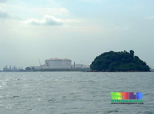Pulau Jong and Pulau Sebarok