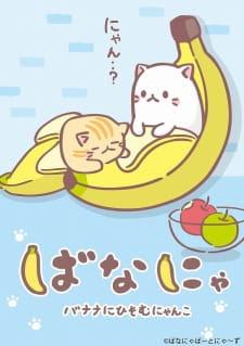 Bananya picture