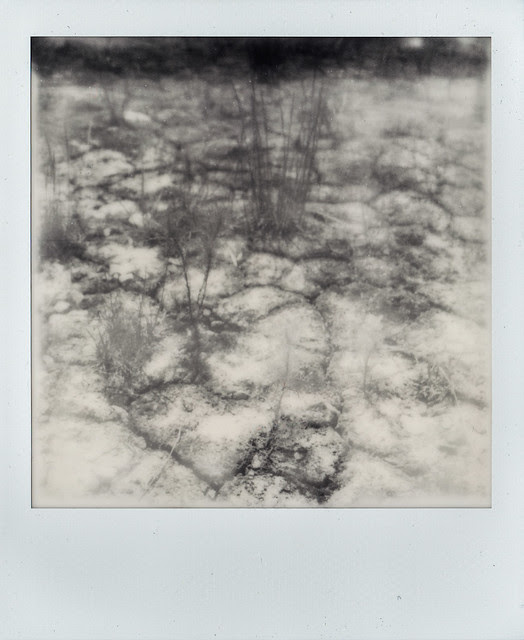 Ground on a pile - Copyright © 2013 Marcin Michalak Photography.
