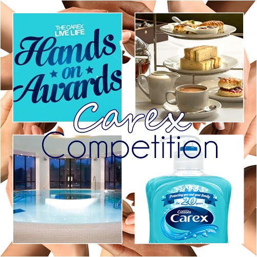 Carex_Hands_on_awards_competition