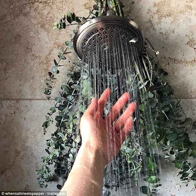 Cách giữ phòng tắm luôn thơm