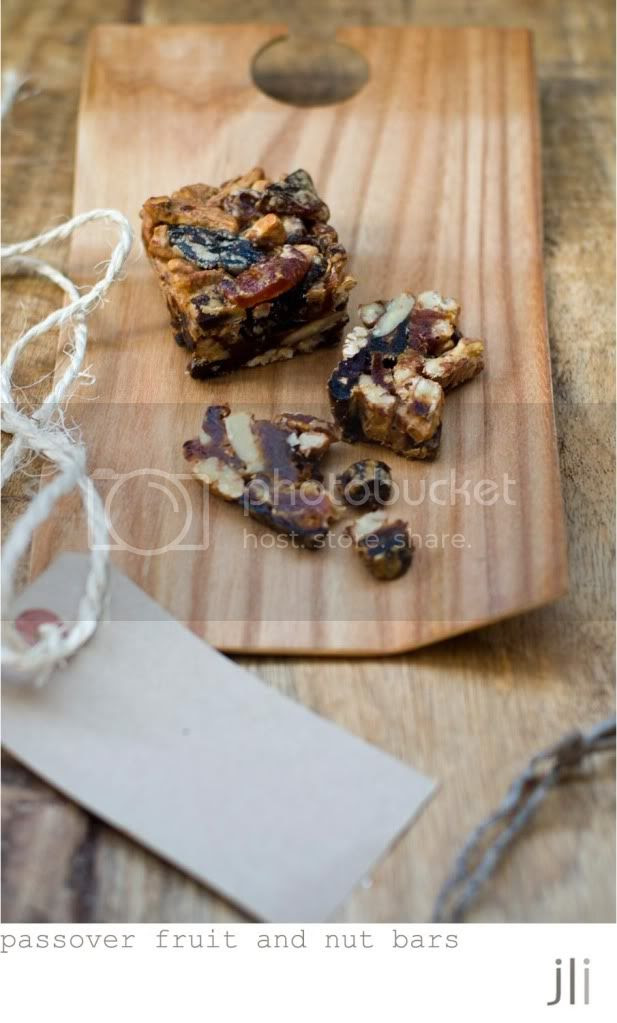 passover fruit and nut bars