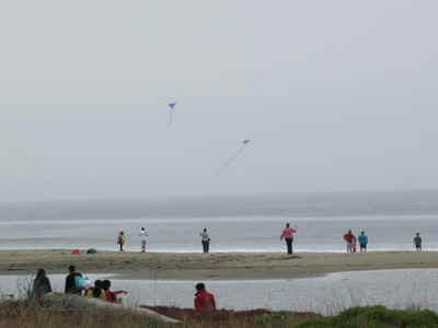 kites.jpg (77549 bytes)