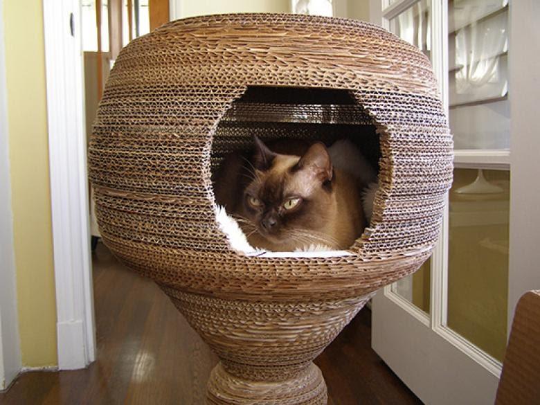 Cara Membuat Rumah Kucing Dari Kardus Tingkat - Renunganku
