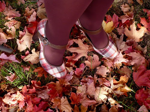 Falling for Fall - Oct 21 (27)