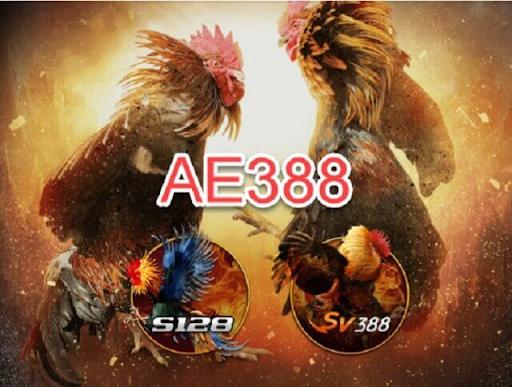 Trò chơi đá gà của nhà cái AE888