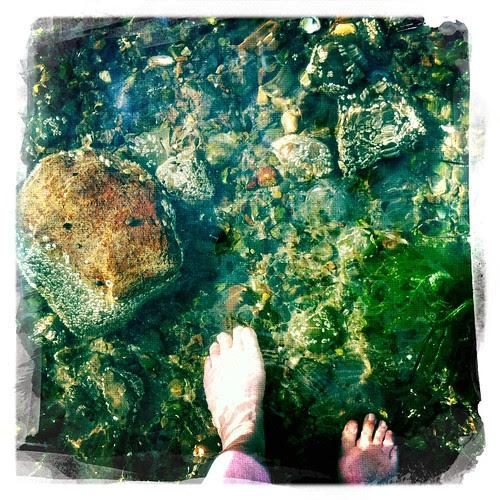 feet :: sommerføtter i vann