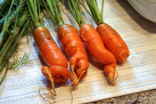 crooked carrots